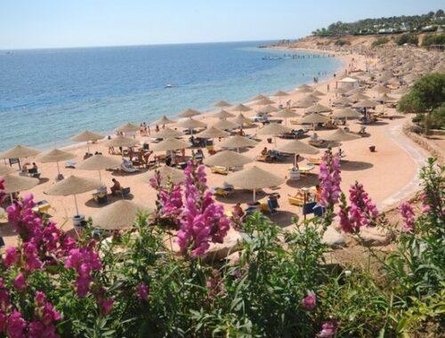 Sharm el Sheikh chiama Italia: Domina presenta la destinazione turistica Covid Free